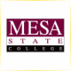 Colorado Mesa University - Engineering School Ranking